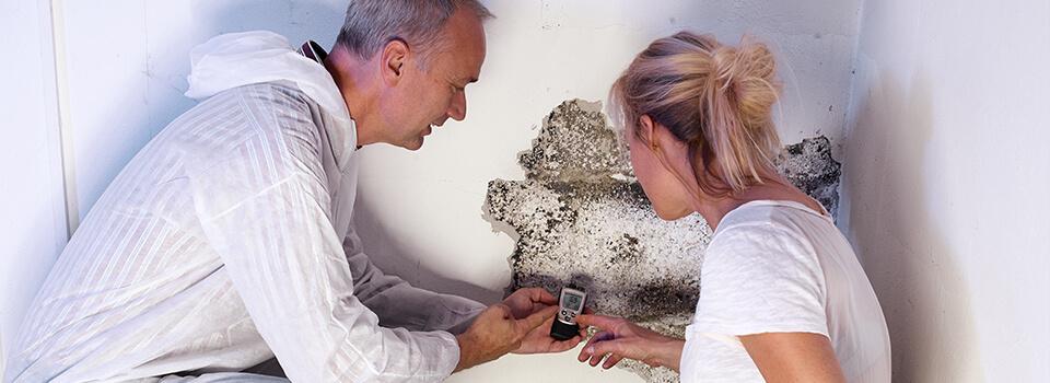 mold-inspection2-slide